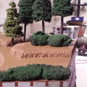 Model Trees And Shrubs
