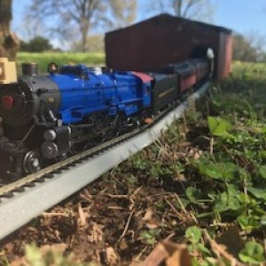 Polar Blue K4 on Shed